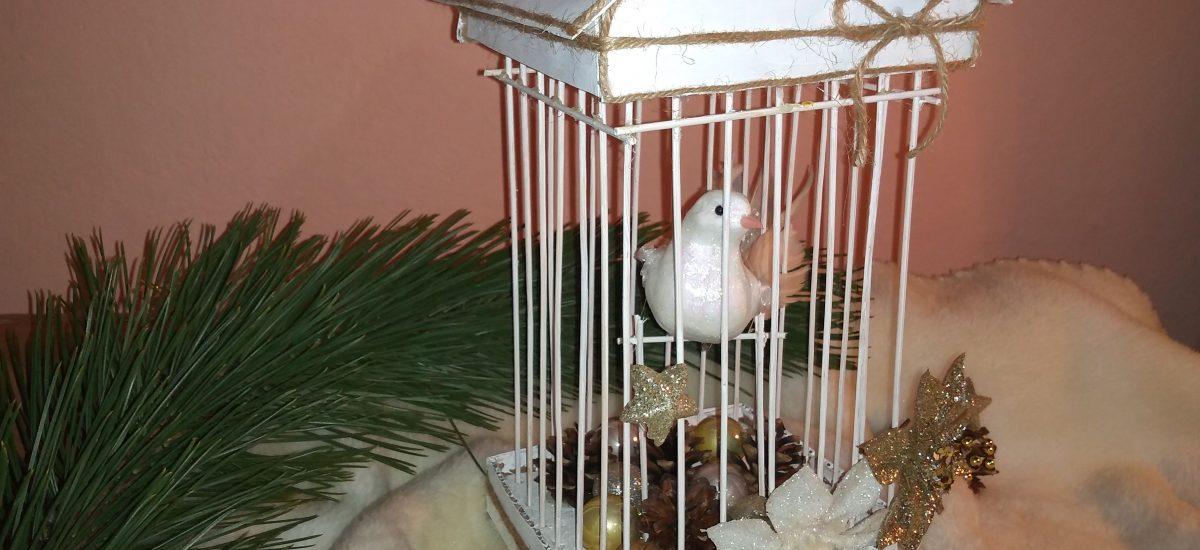 Biela holubica v klietke