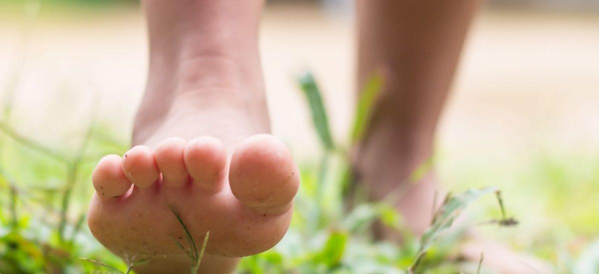 Bosá noha