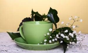 Jarný čaj