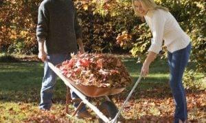 Jesenné upratovanie