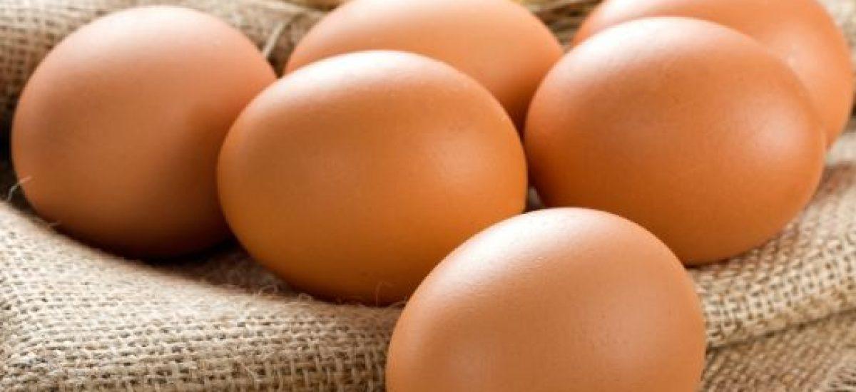 Vajcia