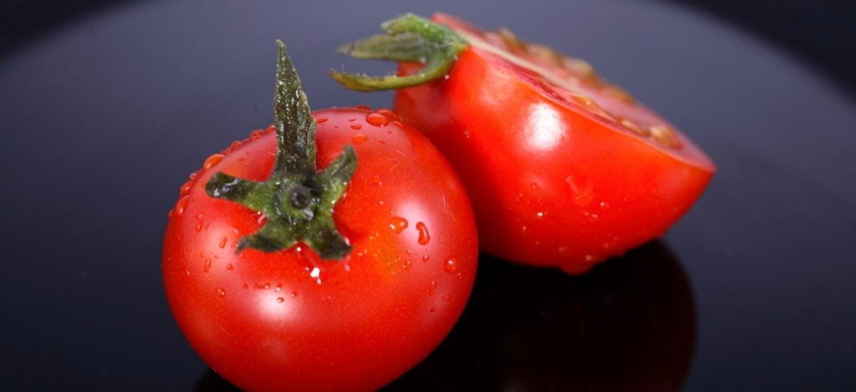 paradajka