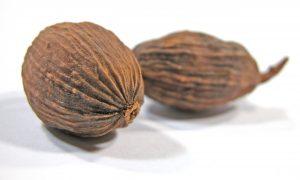 Muškátový orech