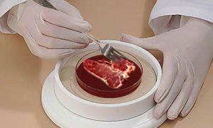 Umelé mäso
