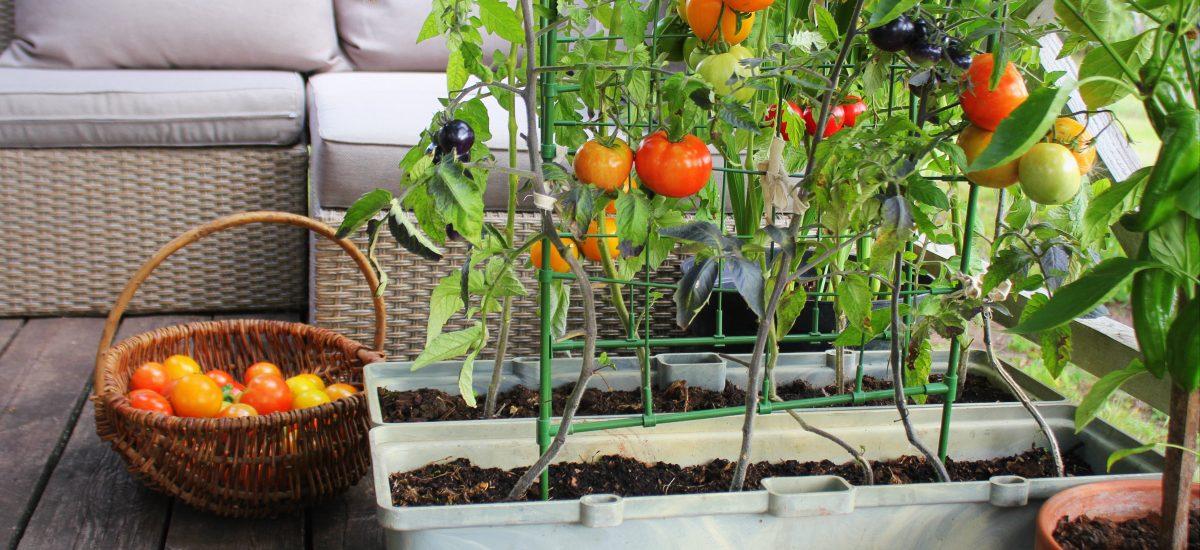 Záhradu si môžete vytvoriť aj na balkóne