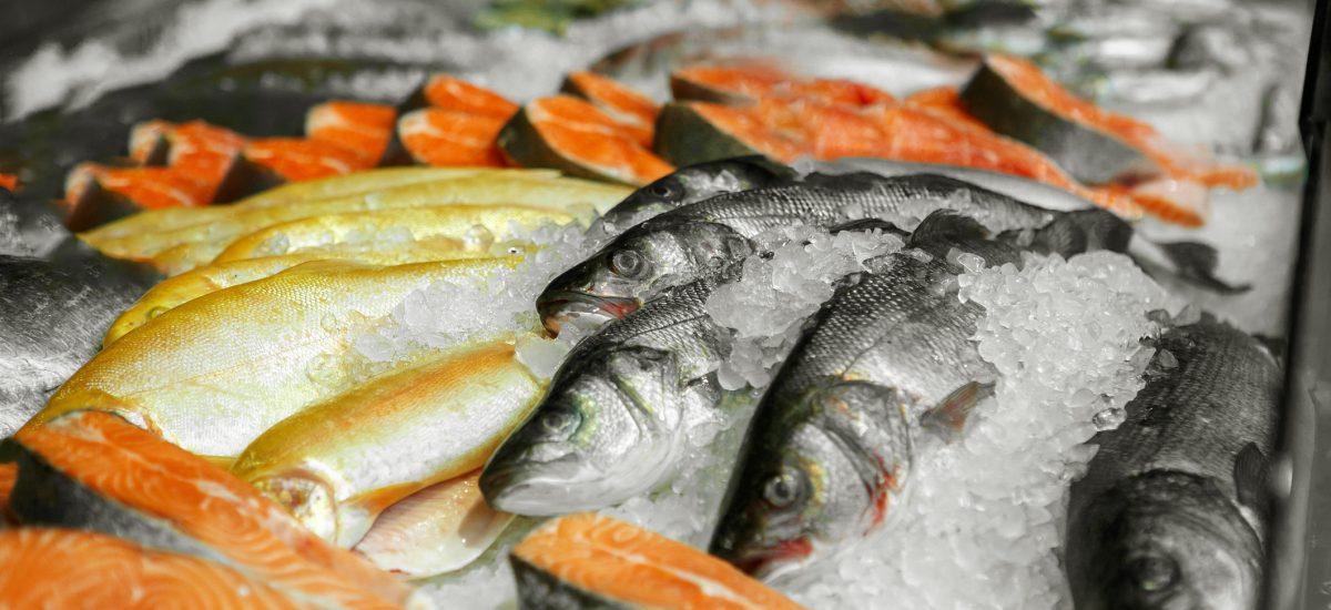 Rôzne druhy rýb