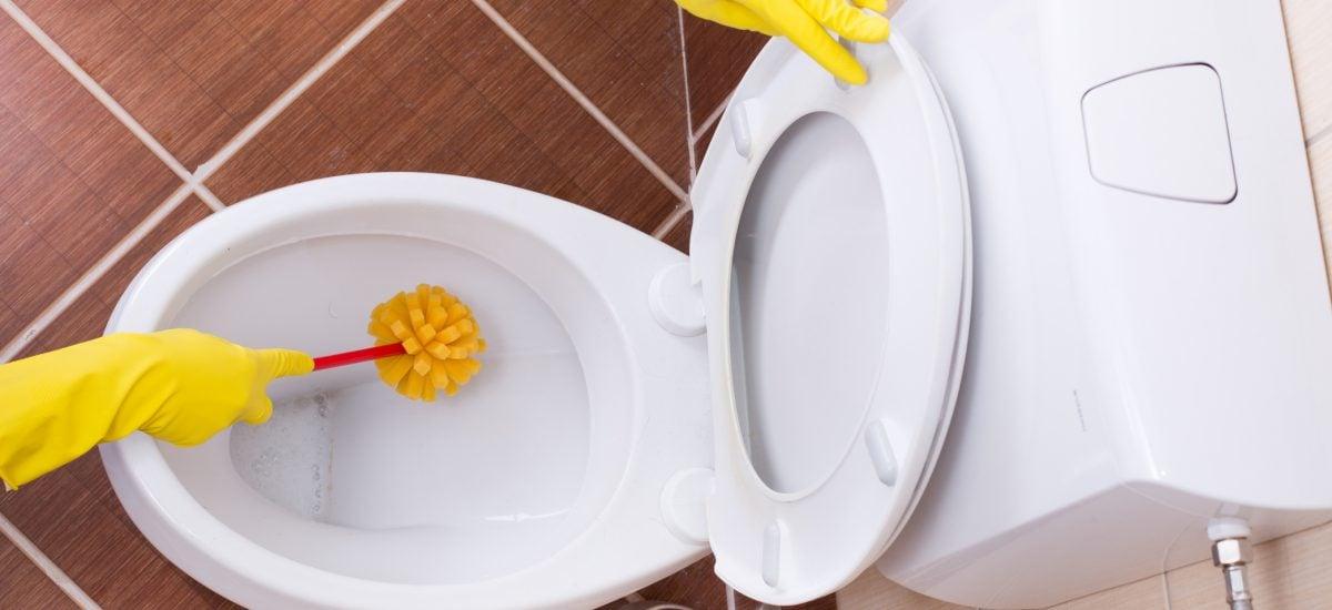 Čistenie záchodu