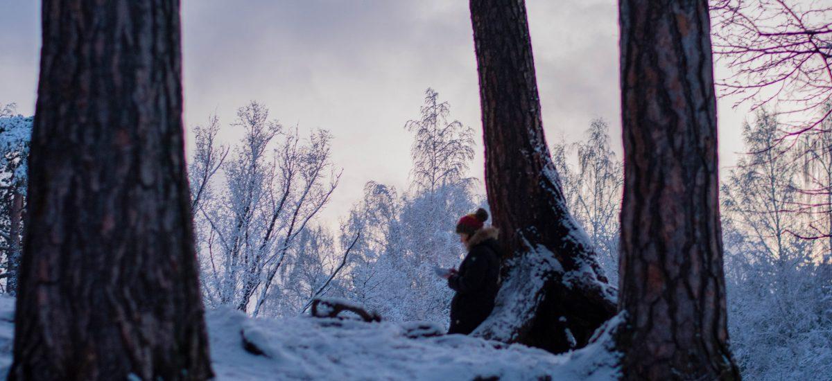 Dej knihy Dcéra snehu sa odohráva na Aljaške