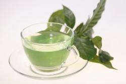 Zelený čaj má množstvo antioxidantov